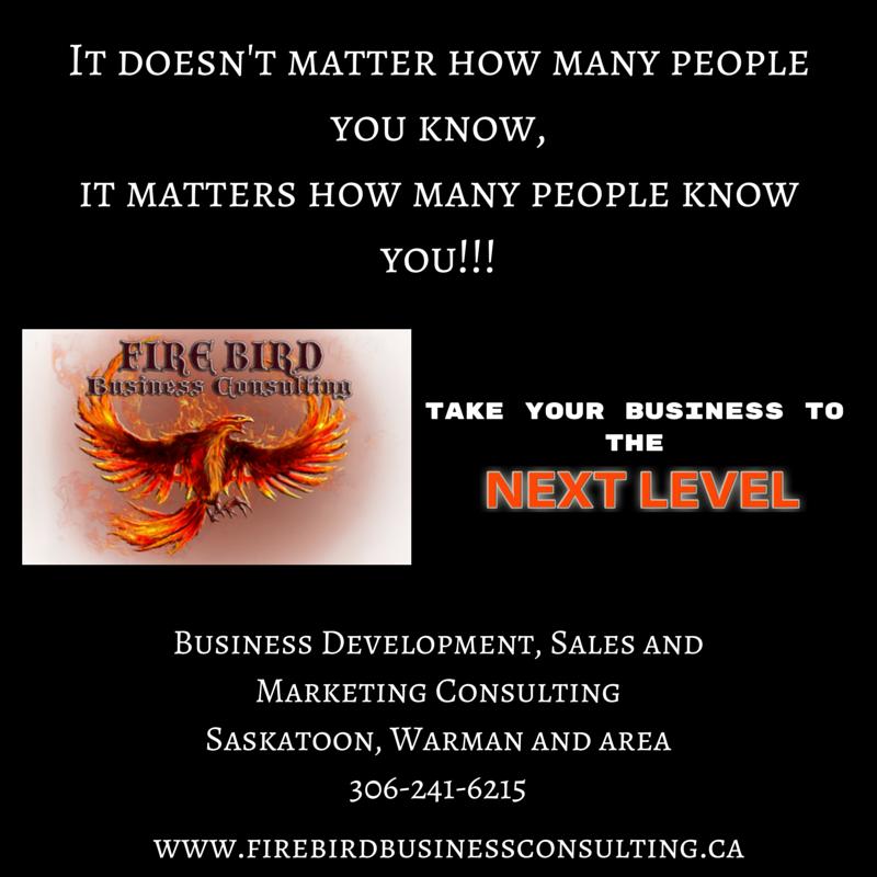 Go to the next level with Firebird Business Consulting ltd – Saskatoon – Regina – Prince Albert