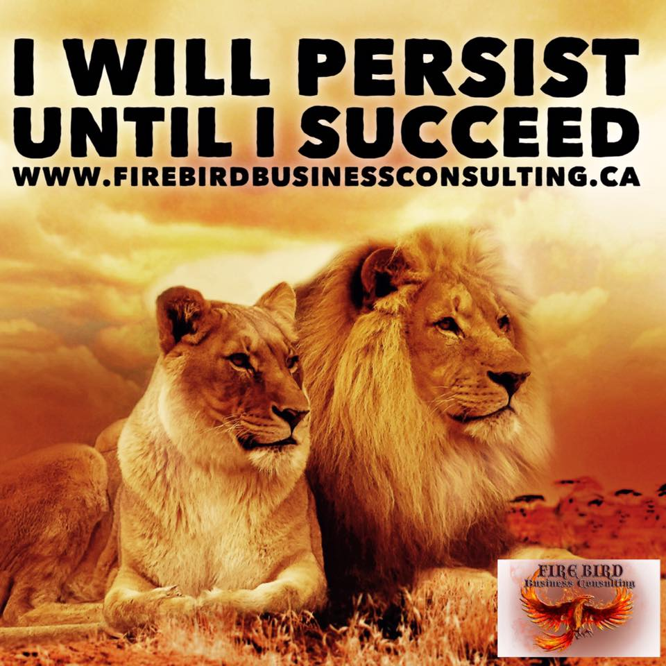 I will persist until I succeed – Firebird Business Consulting Ltd – Saskatoon – Regina