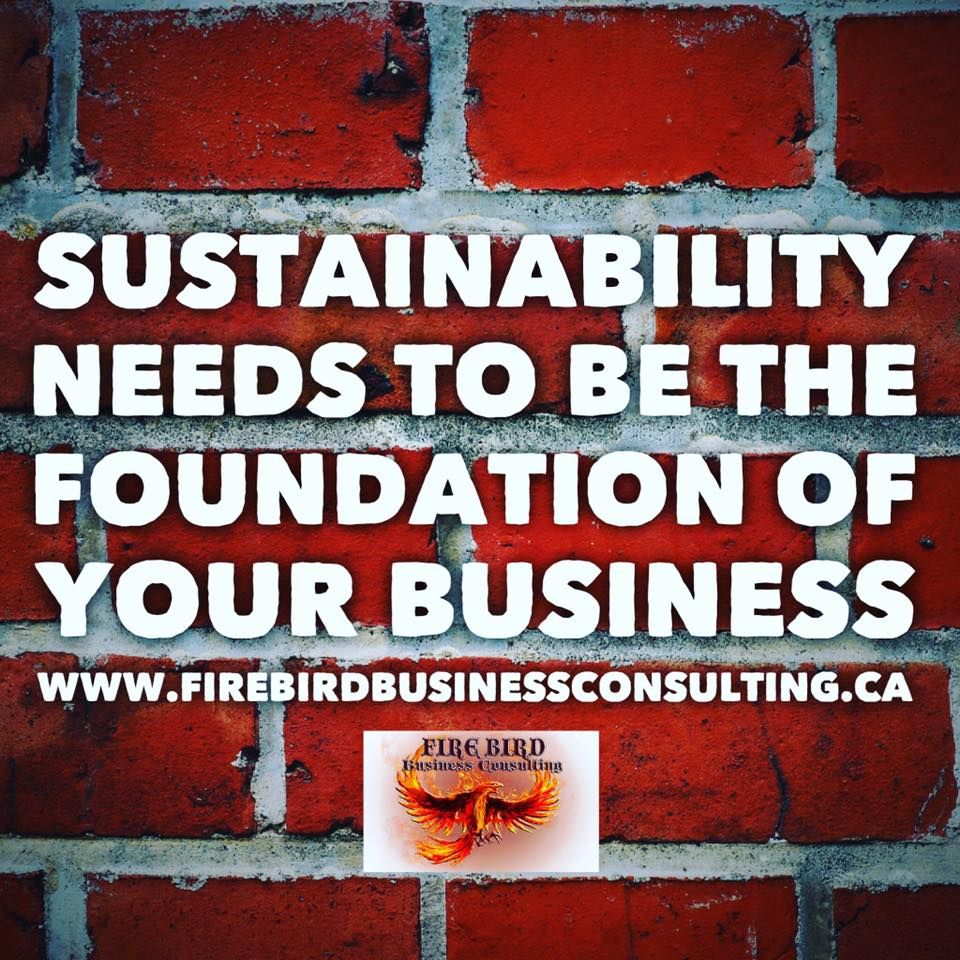 Sustainability needs to be the foundation of your business – Firebird Business Consulting Ltd