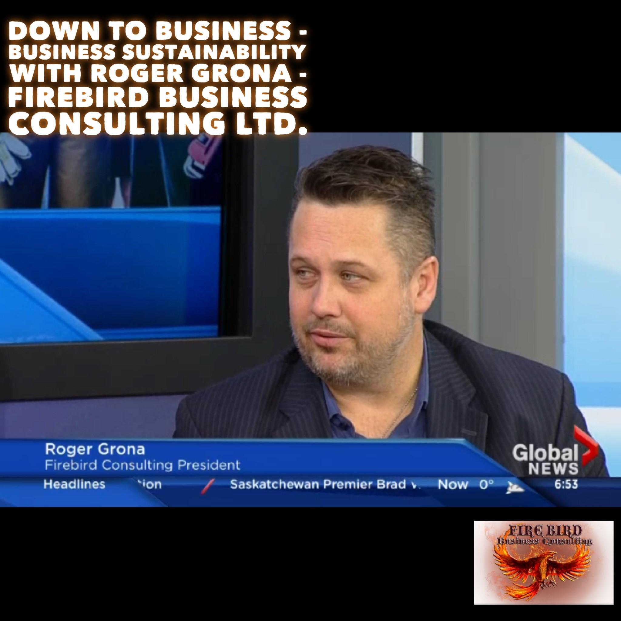 Down to Business – Business Sustainability – Firebird Business Consulting Ltd – Saskatoon – Regina