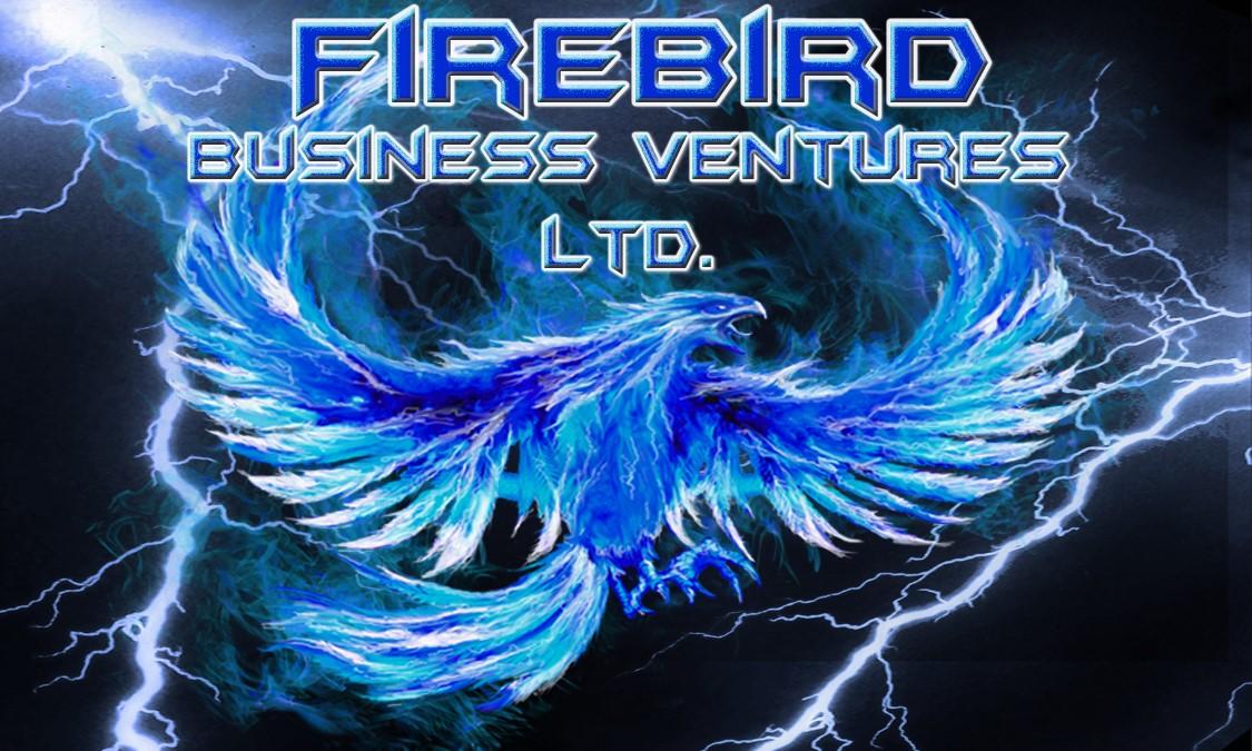 Saskatoon Business Incubator & Business Accelerator – Firebird Business Ventures Ltd. – About