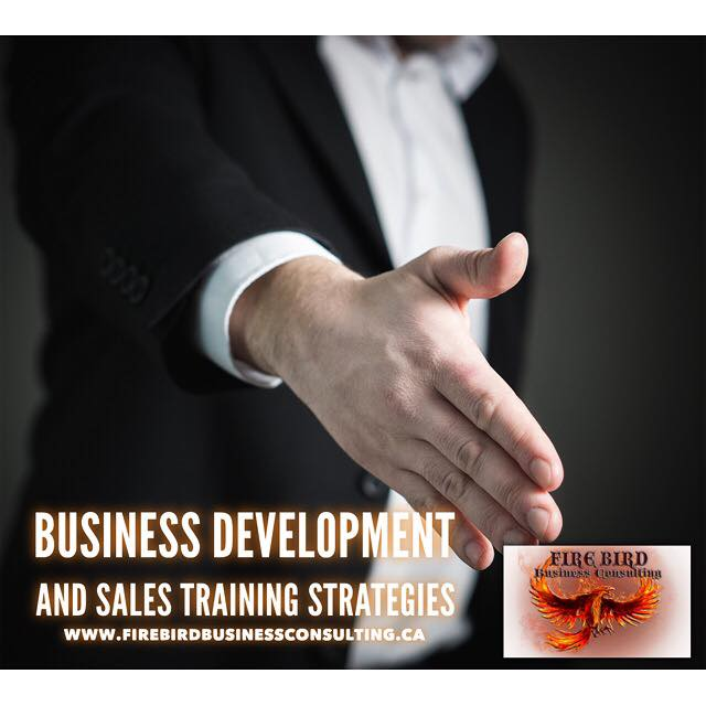 Sales Training Strategies: Firebird Business Consulting Ltd. – Blog Site