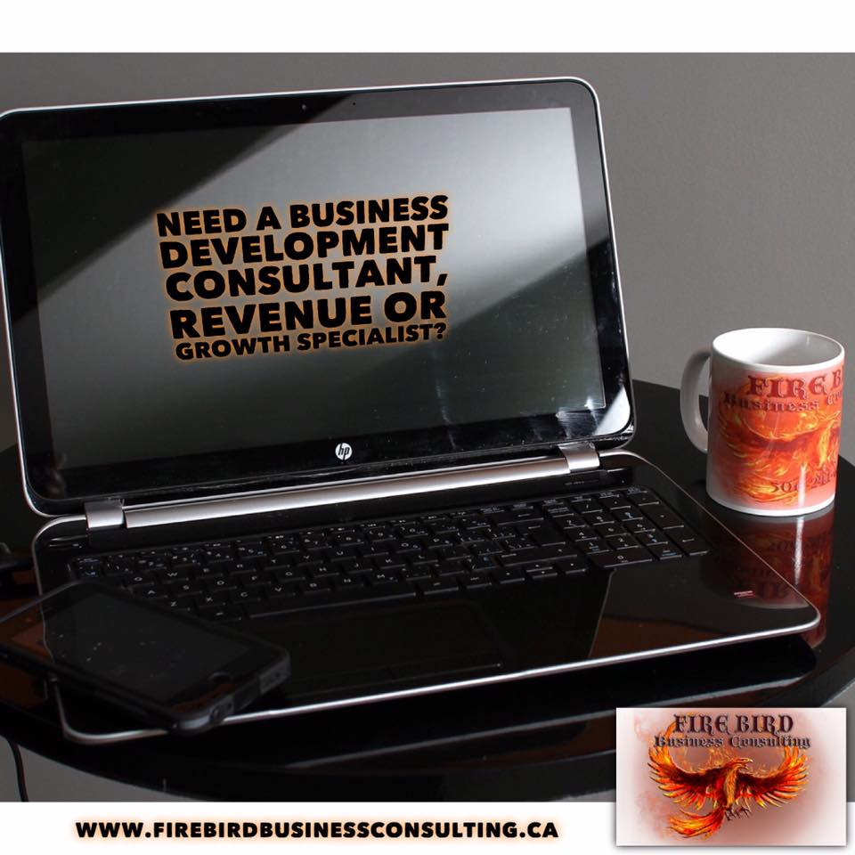 Need to hire a Business Development Consultant, Revenue Specialist or Growth Specialist? – Firebird Business Consulting – Saskatoon