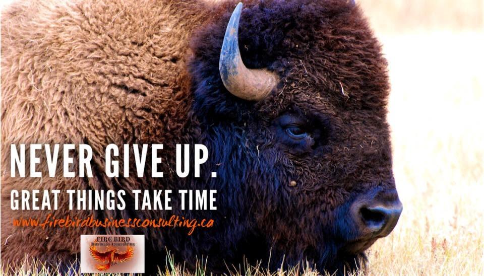 Never give up. Great things take time – Firebird Business Consulting Ltd. – Saskatoon – Regina – Sask. – Canada