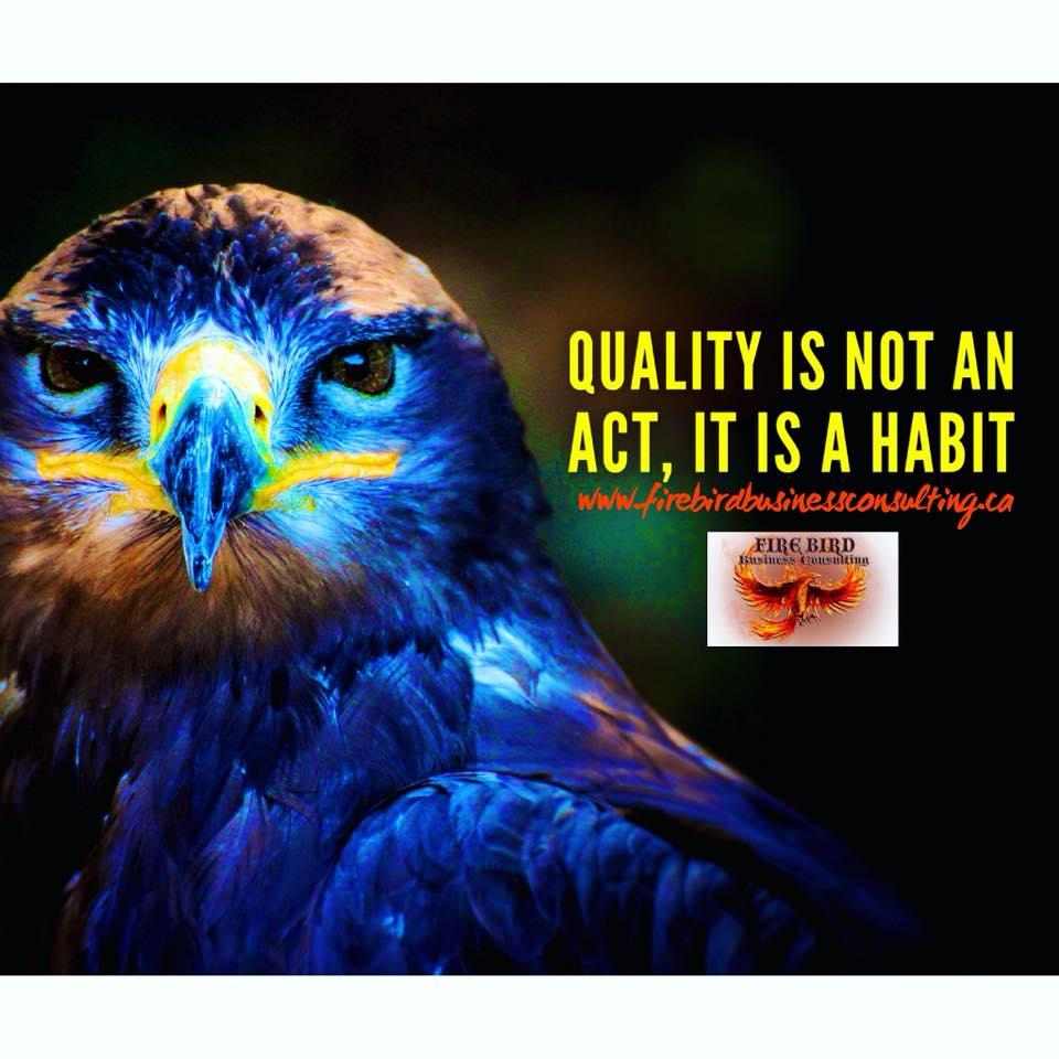 Quality is not an act, it is a habit – Firebird Business Consulting Ltd. – Saskatoon – Regina – Sask. – Canada