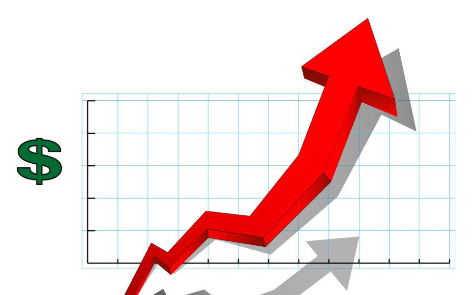 Revenue, Sales, Business Growth, Profit Specialists – Firebird Business Consulting Ltd. – Saskatoon