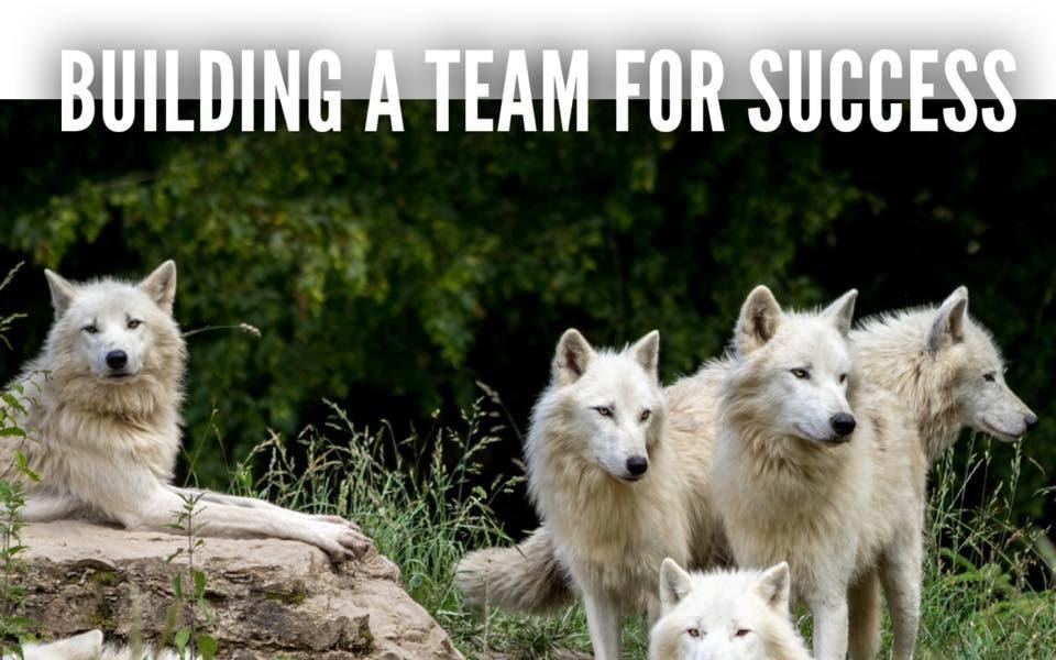 Building a team for success – by Roger Grona – Firebird Business Consulting Ltd. – Saskatoon – Regina