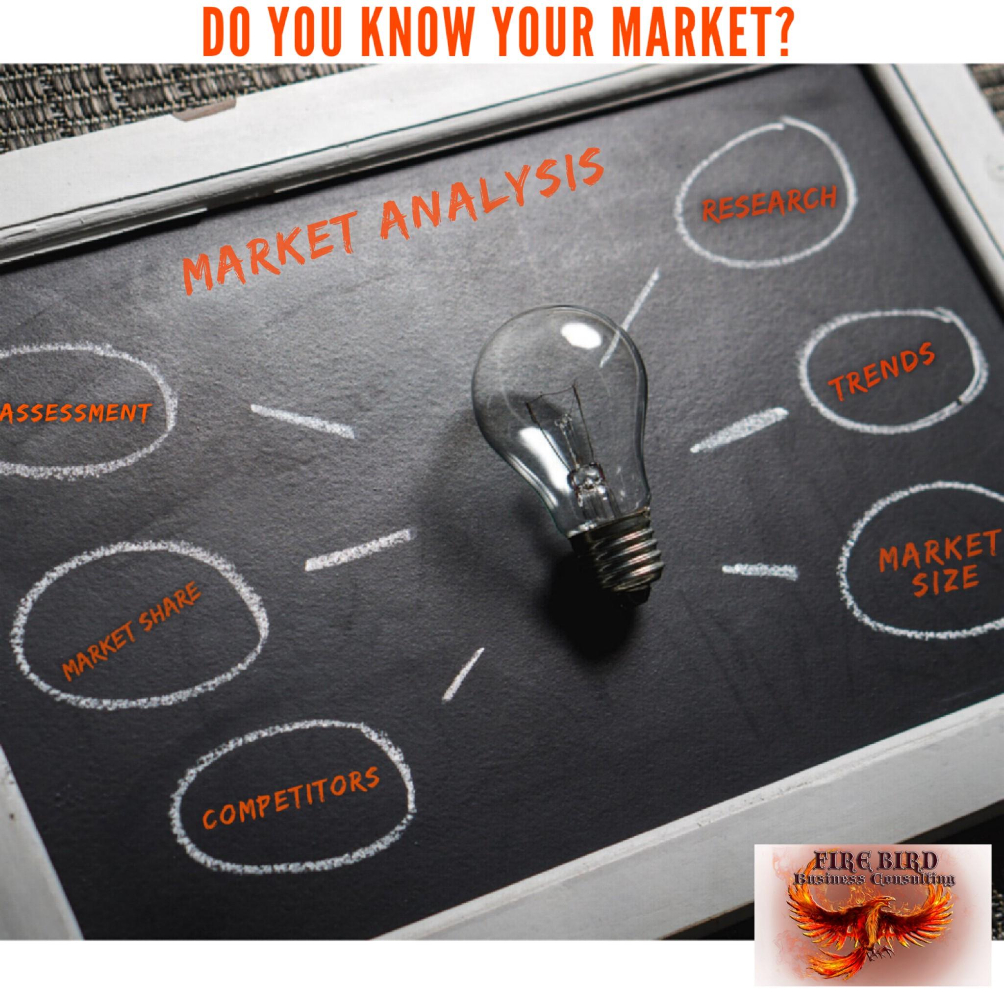 Market Analysis – Market Assessment – Firebird Business Consulting Ltd. – Saskatoon – Saskatchewan