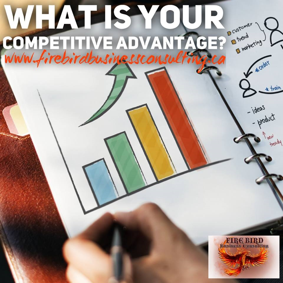 What is your competitive advantage? – Firebird Business Consulting Ltd. – Saskatoon – Sask – Canada
