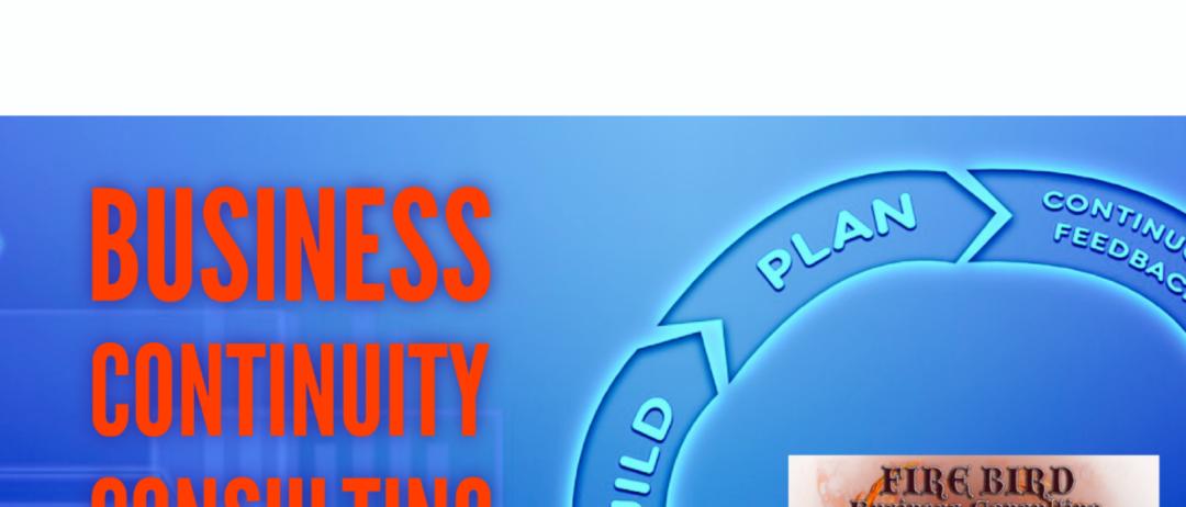 Business Continuity Consulting Services – Risk Management Consulting – Firebird Business Consulting – Saskatoon – Regina – Saskatchewan – Kingston – Canada