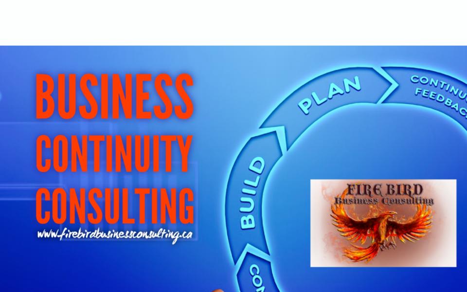 Business Consultant Services – Firebird Business Consulting Ltd. – Toronto, Ontario, Canada